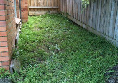 FTG-LOW-MAINTENANCE-YARD-BUILD-BEFORE-1